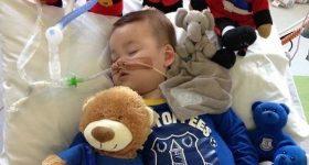 To już pewne ! Polska uratuje dwuletniego Alfiego! Ojciec chłopca mocno dziękuje nam za pomoc!